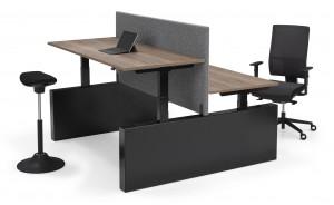 Elektrische bench Flex 3EL Wang